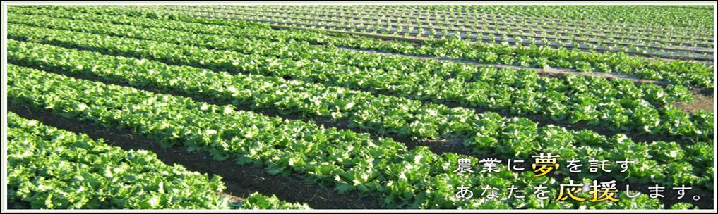 (公財)徳島県農業開発公社んおホームページ画像