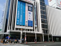 東急本店前の道路