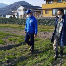 県産パスタ用小麦のテスト栽培について